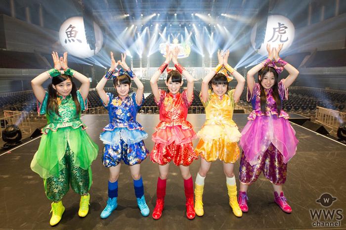 チームしゃちほこが幕張メッセ公演をLINE LIVEにて全曲 最速オンエア!日本武道館公演へ向けて、しゃちサマ2014、2015映像作品も放送!
