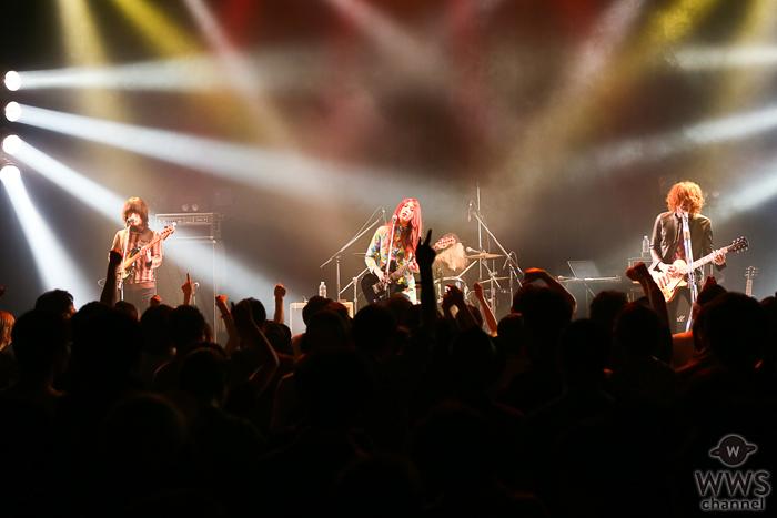 【ライブレポート】GLIM SPANKYがYATSUIフェスで映画「ONE PIECE」主題歌『怒りをくれよ』などを披露!