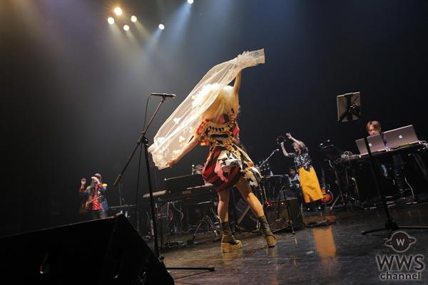 【ライブレポート】デビュー25周年を迎えたCharaが名盤『Junior Sweet』を携えたツアーを開催!大ヒットアルバムの全曲+人気曲も披露し、ツアーファイナルを盛り上げる!