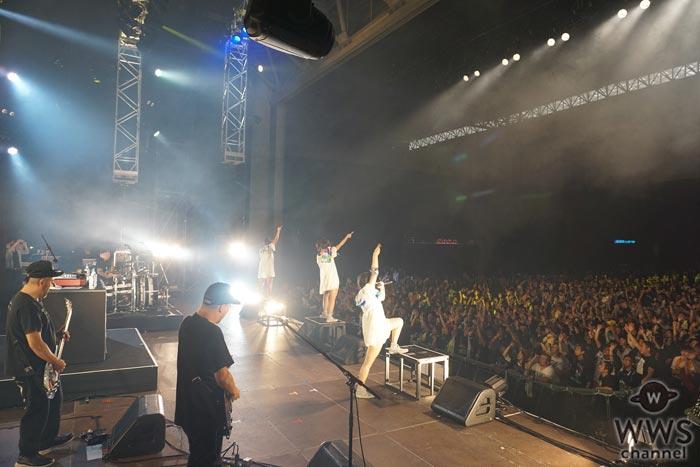 あゆみくりかまきが夢にみたCOUNTDOWN JAPAN出演で喜びを爆発させ昨年の無念を晴らす!『ナキムシーヒーロー』のMVも解禁!