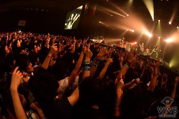 TOTALFATがCOUNTDOWN JAPAN 16/17で魅せつける!フロアと作り上げる最高のお祭り騒ぎが今始まる!