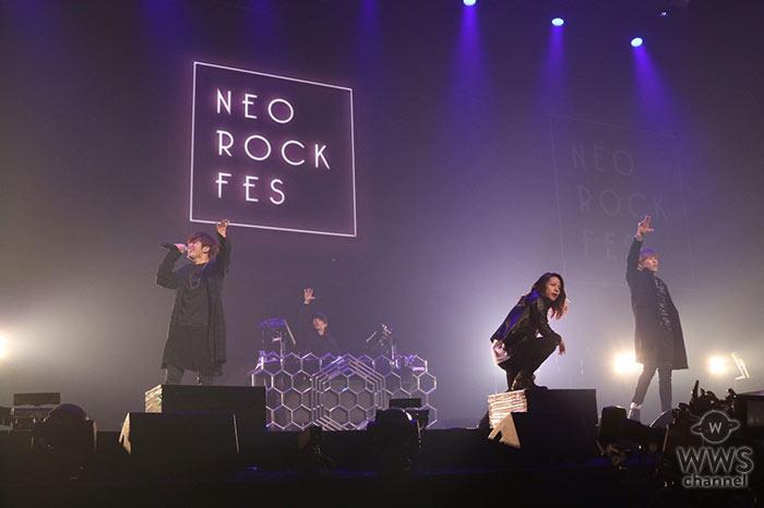 THE BEAT GARDENが日本武道館『NEO ROCK FES』オープニングアクトで登場!