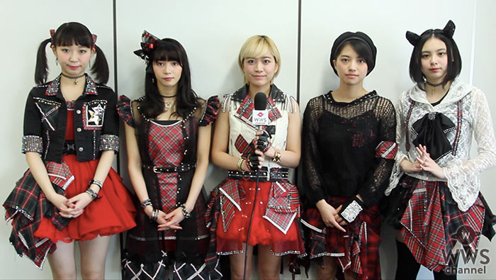 【動画】勢いが止まらないベイビーレイズJAPANにインタビュー!野外ワンマンライブ3連戦が決定!