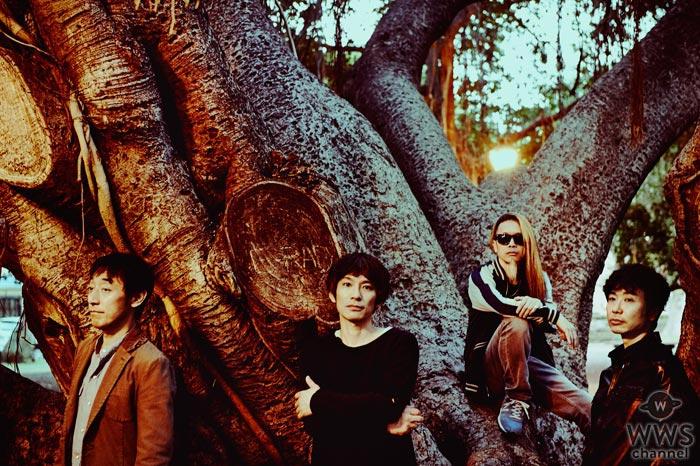 スピッツの結成30周年記念にデビュー曲から最新作までのシングル37曲のMVとライヴ映像厳選集50曲を『GYAO!』で配信決定!