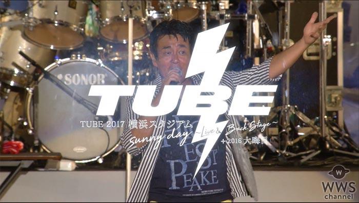 TUBEがオリコンデイリーDVDランキング2位と好発進の『雷雨の横浜スタジアムライブ』トレーラー映像を公開!