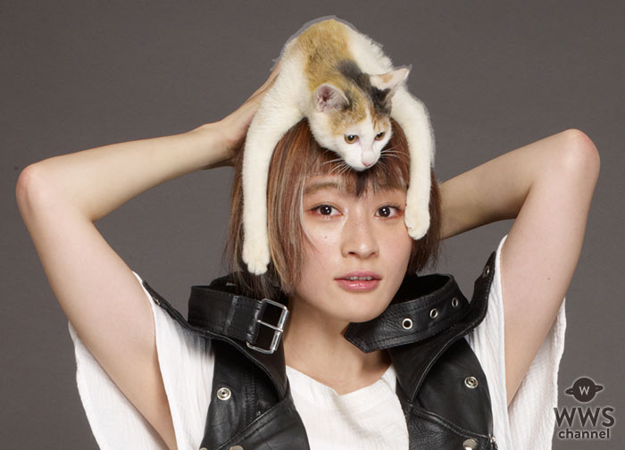 水曜日のカンパネラ・コムアイ、猫役で『猫は抱くもの』映画初出演!!