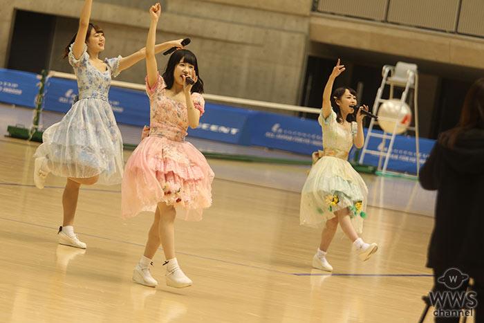 さくらシンデレラが東京体育館で可愛いすぎる 元気いっぱいのパフォーマンス!6thシングル『ほしがりガール』ほか全3曲を披露!