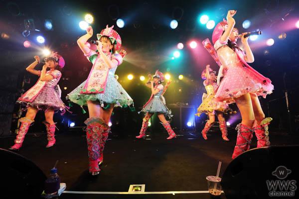 世界標準KAWAIIアイドル「わーすた」 新定期ライブでWHITE JAM SHIROSE × Da-iCE 工藤大輝 提供新曲初披露