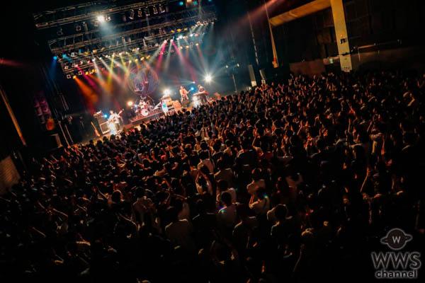 パスピエ、「ネオンと虎」を体現する全国ツアー「カムフラージュ」開幕!