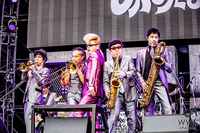 【ライブレポート】東京スカパラダイスオーケストラが氣志團万博 2018に登場!綾小路 翔と初のフィーチャリングソングも?!