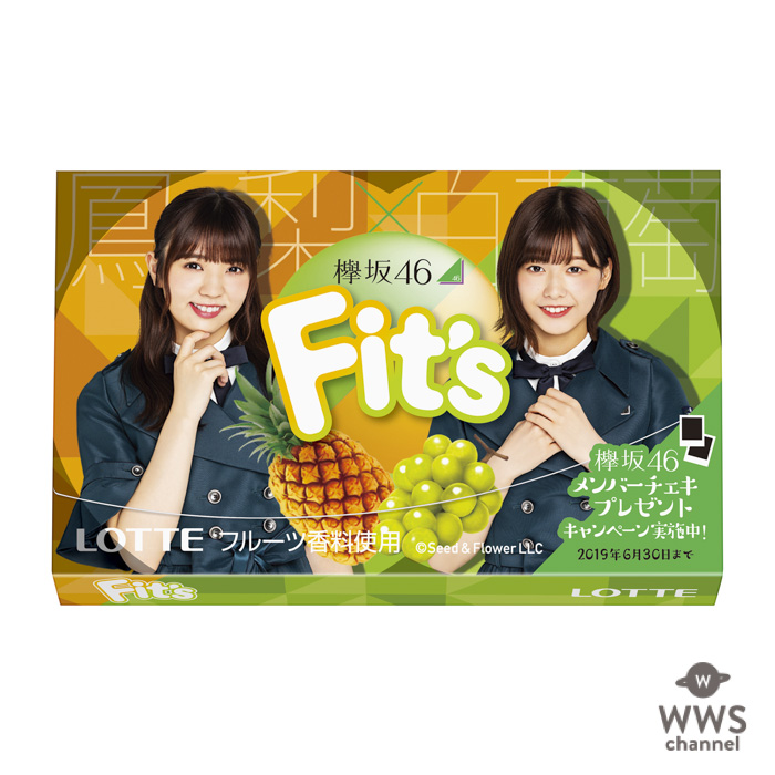 欅坂46とロッテ「Fit's(フィッツ)」が初コラボ!デザインパッケージ3種を全国で発売!!