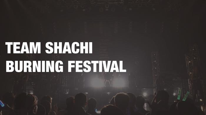 TEAM SHACHI(シャチ)、初のフリーライブ「全速前進」から「BURNING FESTIVAL」のライブ映像公開!