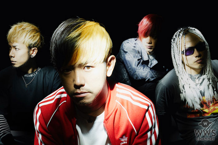 KNOCK OUT MONKEY、2019 年全国ツアー開催決定!!