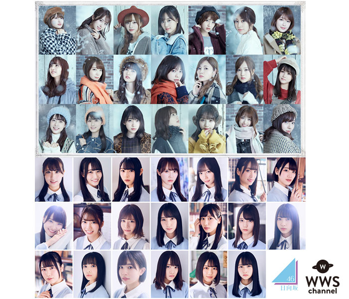 乃木坂46、日向坂46が「ZIP!春フェス」に出演!3日間で12組のアーティストが競演!!