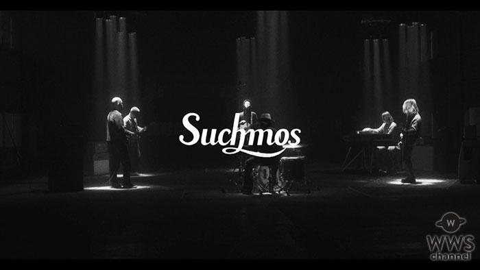 Suchmos、3rd Full Album『THE ANYMAL』収録のリード曲「In The Zoo」のMV公開!
