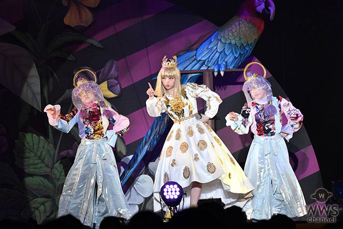きゃりーぱみゅぱみゅ、出雲大社に舞う!伝統と革新を融合した、一夜限りの初野外ワンマンライブを開催!