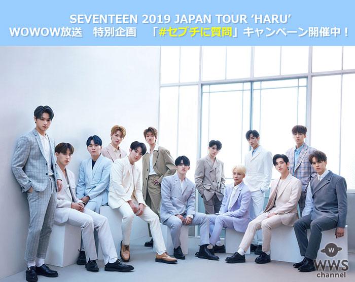 WOWOW × SEVENTEEN「SEVENTEEN 2019 JAPAN TOUR 'HARU'」放送特別企画!7日間限定「#セブチに質問」キャンペーン開催決定!