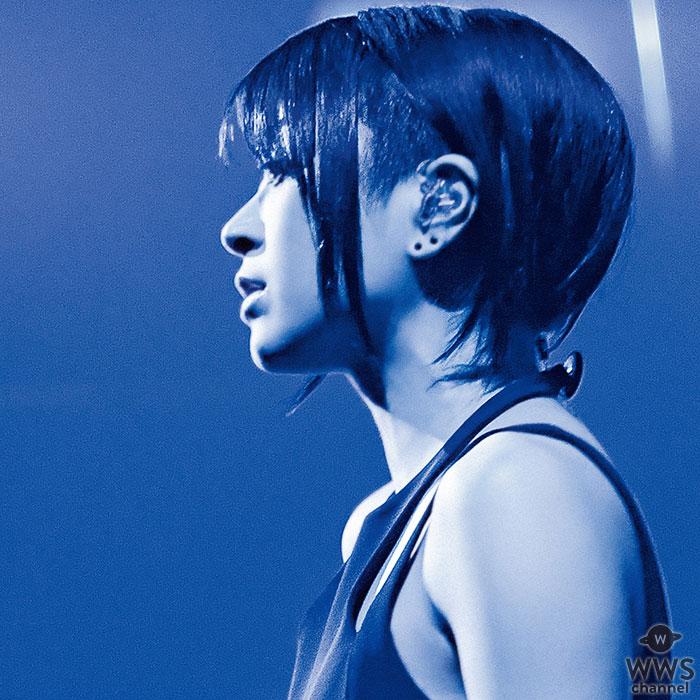 宇多田ヒカル、12年振りに開催された国内ツアーの映像作品を6月に発売!