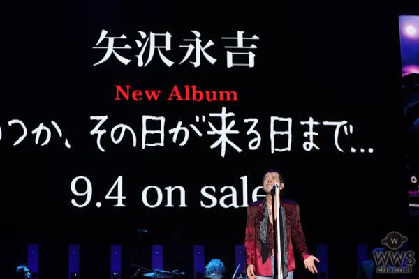 【ライブレポート】矢沢永吉が大トリに登場!盛況のオーディエンスを前に「ロックンロール」の真髄を見せる!<ONE NIGHT SHOW 2019>
