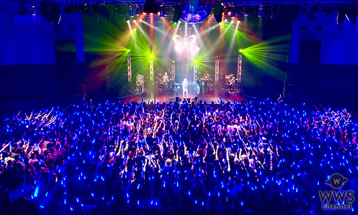 """藍井エイル、""""エイルの日""""に2000人熱狂!1月~全国ライブハウスツアー開催発表!"""