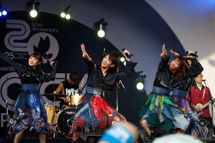 【ライブレポート】TEAM SHACHI(シャチ)が今夏限定スペシャルバンドを率いてキラーチューンをドロップ!<ROCK IN JAPAN FESTIVAL 2019>