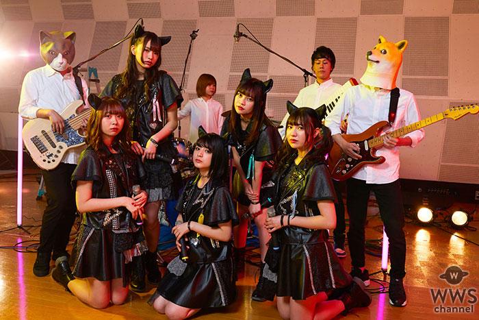 """わーすた、STUDIO LIVE""""ゆうめいに、にゃる!!!!!""""第3弾公開!"""