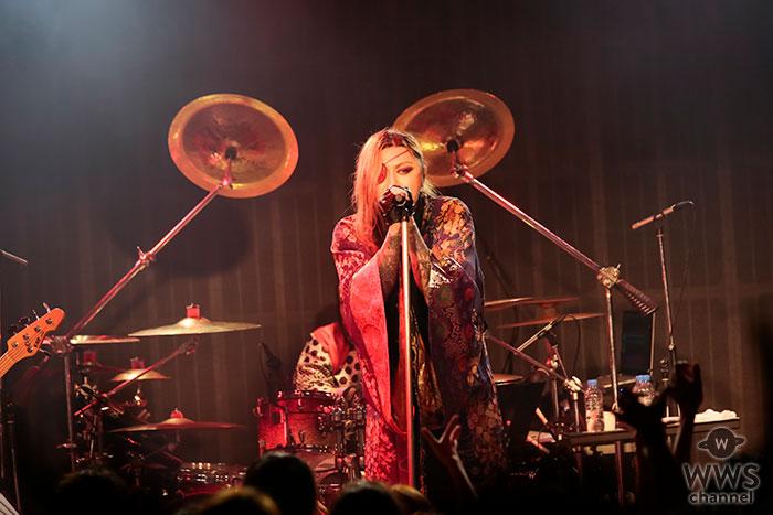 PENICILLINが夏を取り戻せと「祭り」をテーマにライブ。満員の観客たちとPENICILLINの荒ぶるライブの熱気で、会場は猛暑ならぬサウナ祭り!