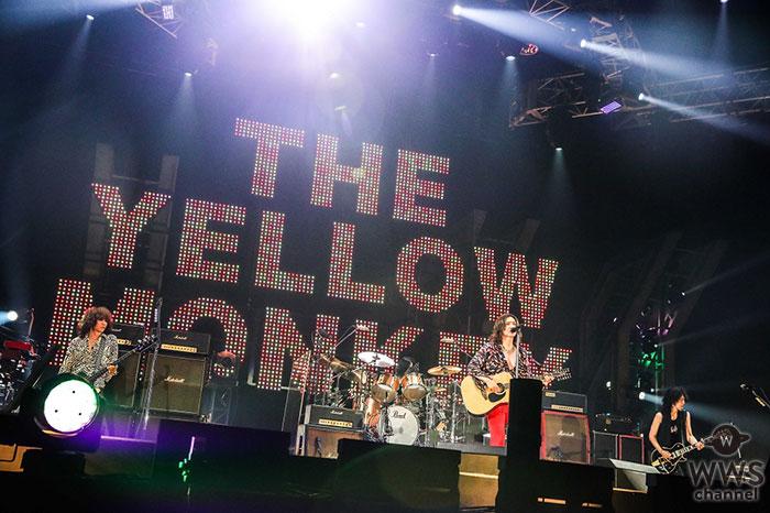 THE YELLOW MONKEY、アリーナツアーのファイナルを迎え全4セットリストのプレイリストを公開!