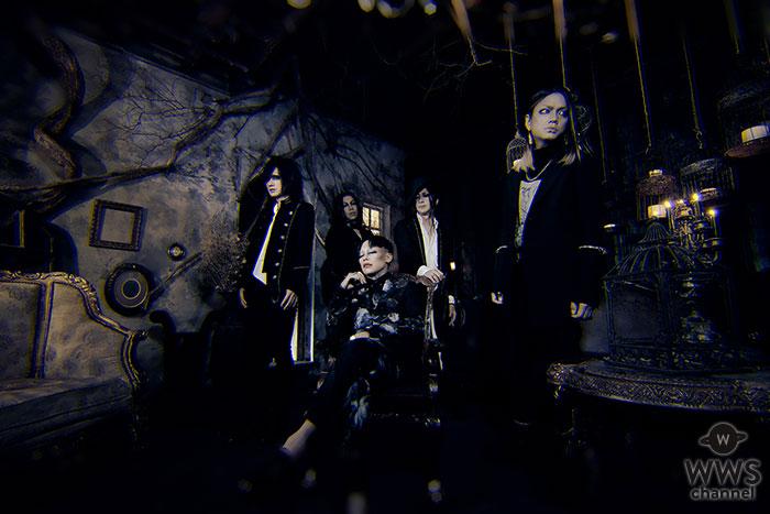 sukekiyo、大晦日に渋谷にてライブ開催を発表!