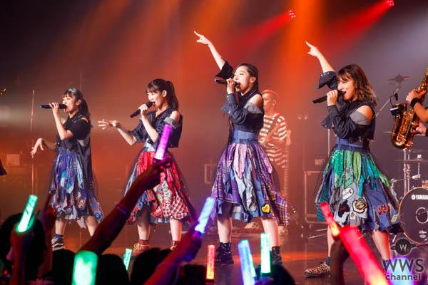 TEAM SHACHI、1stシングル発売記念プレミアムフリーライブ開催!