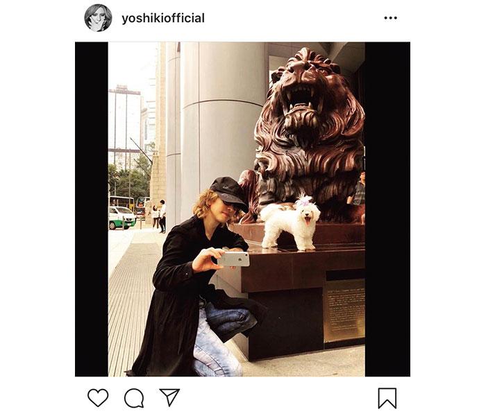 X JAPAN YOSHIKIが愛犬メロディーとのプライベートショット公開!「リラックスしてるYOSHIKIさんが見れて幸せ!」