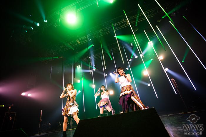 kolme、結成5周年!ライヴツアー「kolme Live Museum -Do you know kolme?-」がスタート!