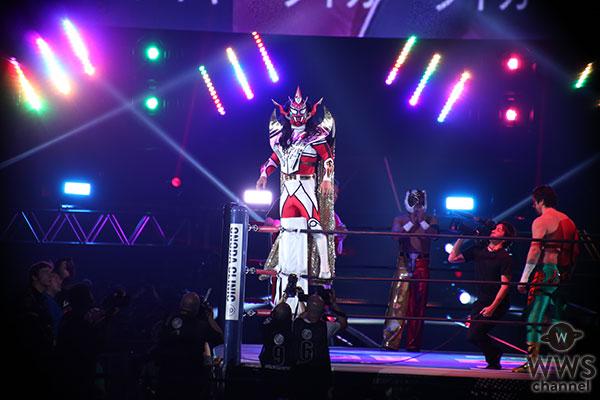 グラビアアイドル・青山めぐが東京ドームで新日本プロレスを観戦!獣神サンダー・ライガー、藤波辰爾、田口隆祐らによる第1試合で幕開け!