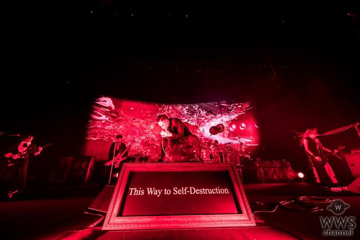 DIR EN GREY、7月ぴあアリーナMMにてライブ2DAYS開催