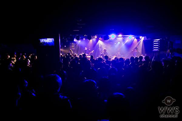 WANDS、倍率25倍超えのプレミアムライブを東京・大阪で開催! 5月の新曲リリースも発表!