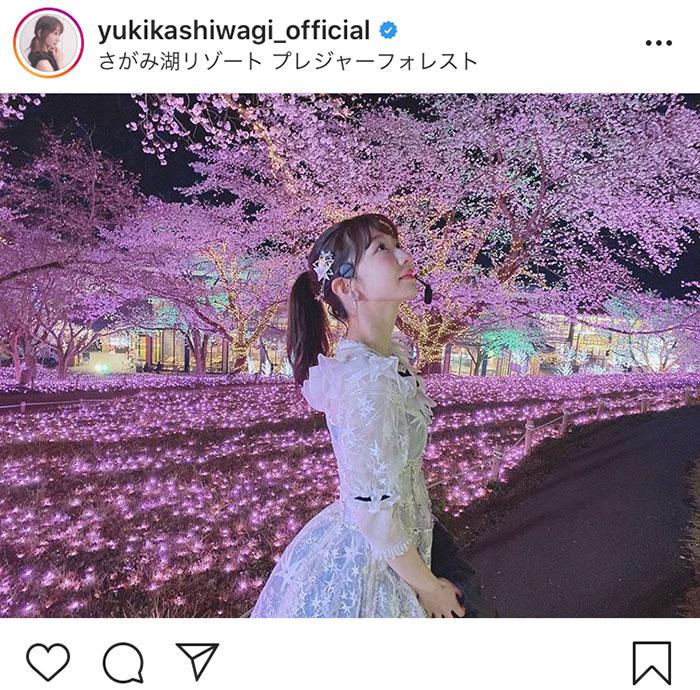 AKB48 柏木由紀、一面ピンクの夜桜ショットに反響「素敵な写真」「桜と共にとても、綺麗です」