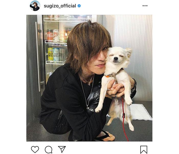 SUGIZO、清春の愛犬との癒しショットを公開「とろけてるー!」「めちゃくちゃ癒されました」