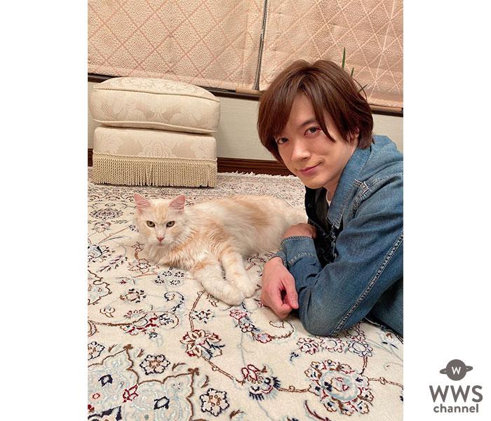 DAIGO、愛猫・ジルにメロメロなSHOTにファン反響!「これからもDAIGO家を癒してあげて」