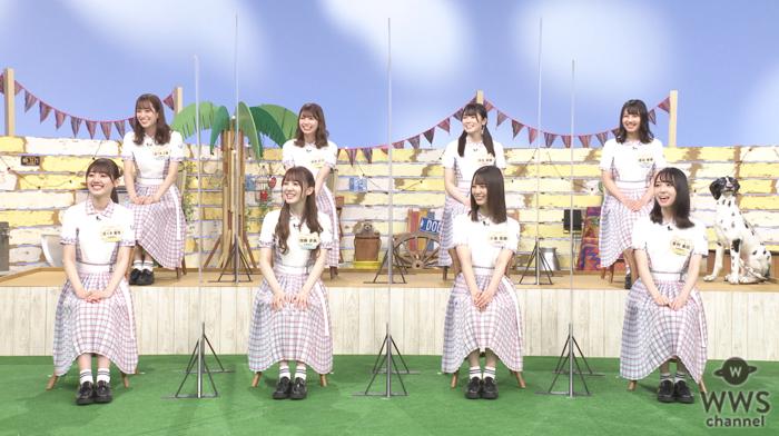 日向坂46が「どうぶつピース!!」スタジオに大集合!丹生明里と渡邉美穂はドックダンスに挑戦