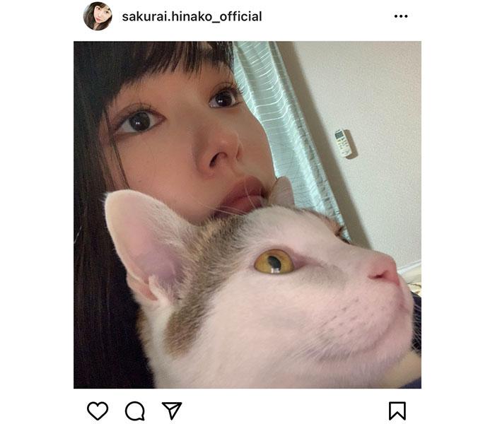 桜井日奈子、愛猫にそっくりな2ショットに癒される!